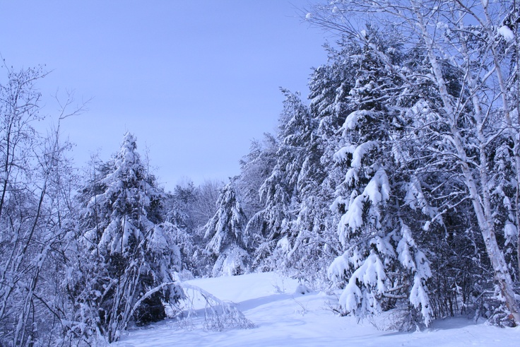 Snowshoeing in the Sudbury Area near the Moonlight Inn and Suites Sudbury