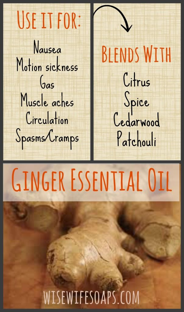 Discover the uses and many natural benefits of Ginger Essential Oil, and how to effectively blend Ginger Essential Oil with other oils in this handy guide! #essential oils #ginger #natural #nausea