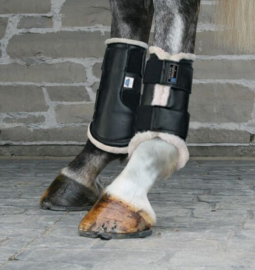 Valena Dressage Boots - Hind