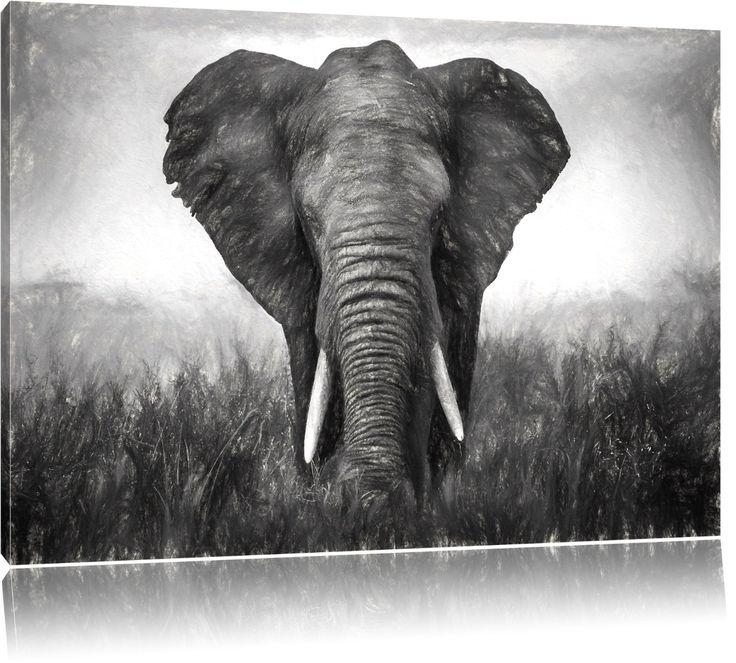 magnifique éléphant Format: 80x60 sur toile, énorme XXL Photos ...
