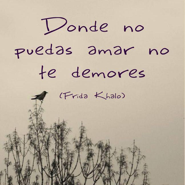 """""""Donde no puedas amar no te demores"""". (Frida Kahlo)  Psicomold Psicólogos • Pioneros en Inteligencia Emocional Terapia presencial y Online www.psicomold.com Tel: 922 634 985"""