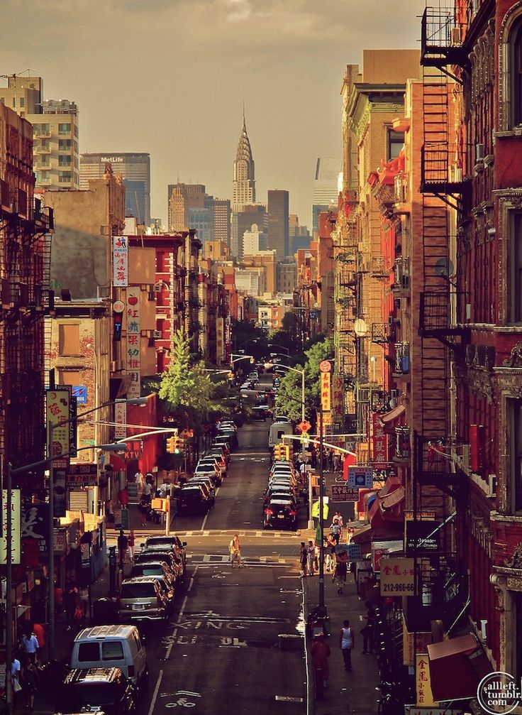 I love NYC. China Town.  Loved the open markets & they had it all!