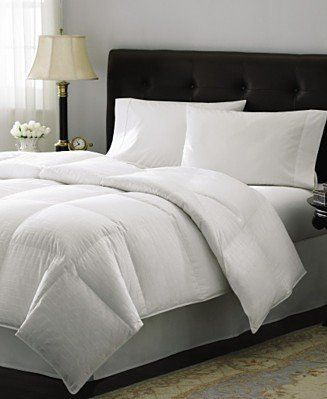 get information on califronia king size white goose down comforter 300 thread count 750 fill power by - King Size Down Comforter