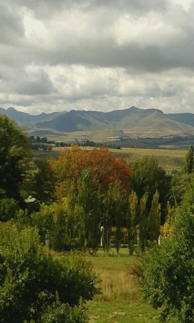 Clarens, South Africa, Autumn, photograph by Engela le Roux