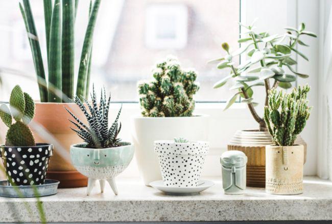 Interieur | 12x inspiratie voor vensterbank styling - Woonblog StijlvolStyling.com