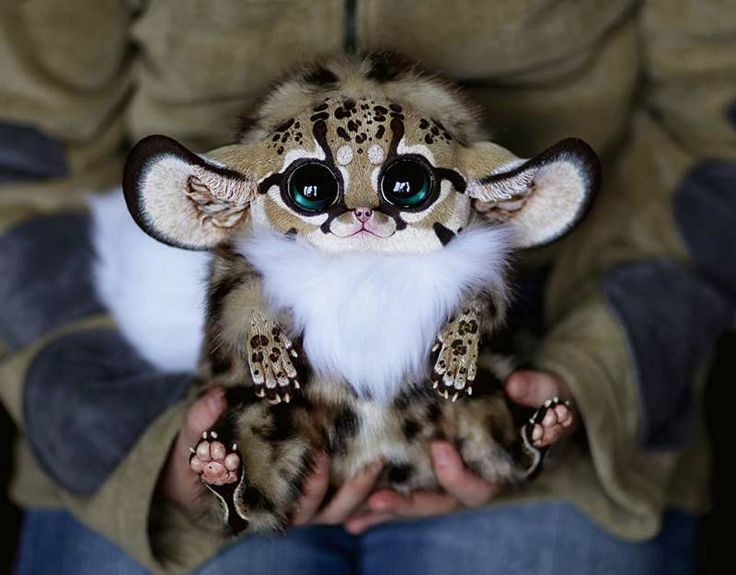 Santani's Realistic Crafted Dolls Santani's Dolls — 23 year old Russian artist, known online as Santani, The artwork combines fantasy and realism. Santani creates stunning dolls using artificial fur, and some plastic materials and as results of the works look like living furry creations.