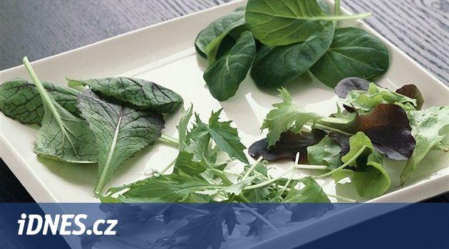 Listová zelenina prospívá srdci,zraku i mozku