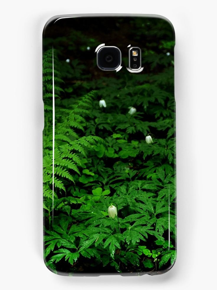 In The Forest Smasung Galaxy Case by Anastasia Shemetova #wood #forest #heart #landscape #green #soil #deep #photo #photography #faerieshop #mystic #mystical #beautiful #plants #clover #fern #bell #white #night #dark #mysterious #jungle #tropical #redbubble #slin #phone