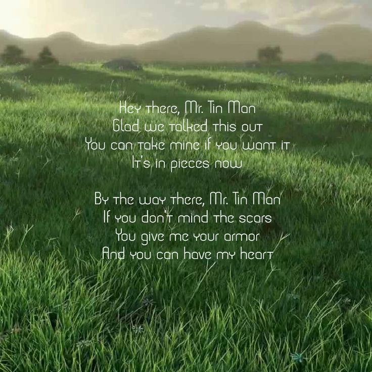 636 best country music images on pinterest for Words to tin man by miranda lambert