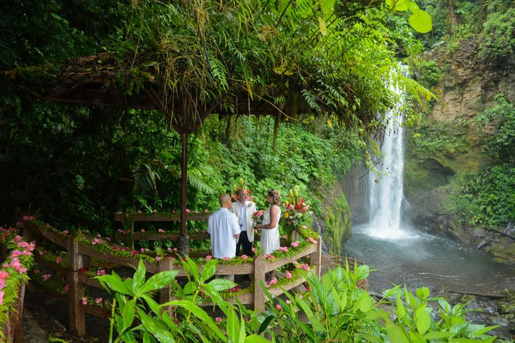 Hawaiian rainforest wedding
