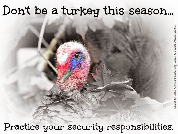 Thanksgiving themed security posters