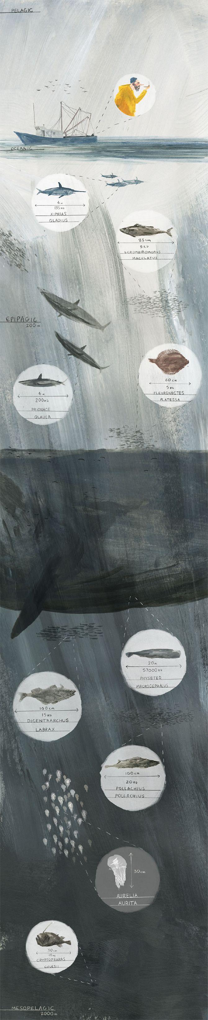 art, illustration, ocean, water, whale, fish, depths, // Joe Todd Stanton.