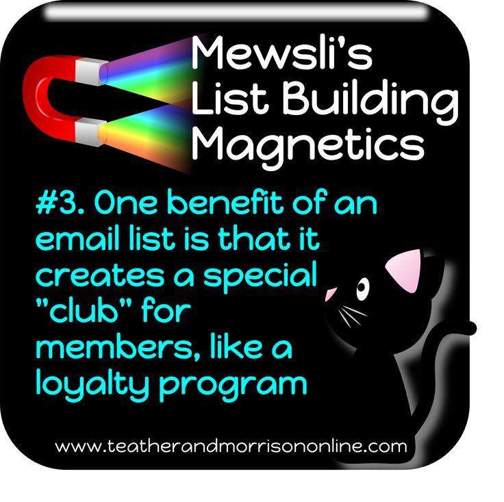 Mewsli is the office cat at www.teatherandmorrisononline.com - pop in and meet the rest of the team! #Mewsli #Marketing #Entrepreneur #SmallBusiness