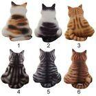 Kissen Sofa Dekor Katze Form Süß Geschenke Heim Tier Motiv Plüsch Kissen Weic…