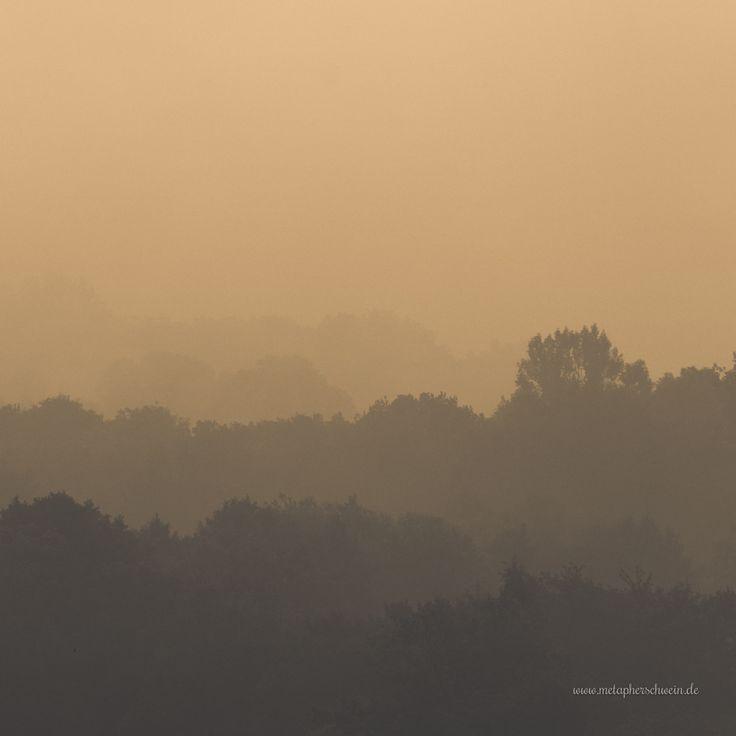 Weserbergland im dichten Nebel...