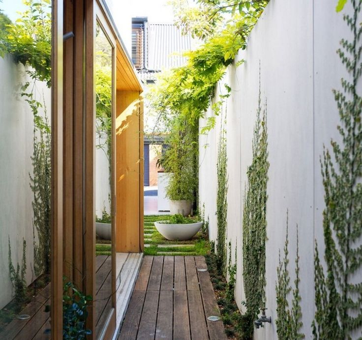 Planting For Side Yards With Narrow Timber Deck And Concrete Wall Climbing Plants Also Hardwood Frame Sliding Glass Door And Vines On Wall Design Ideas: Modern Minimalist Interiors, Bondi House by Fearns Studio