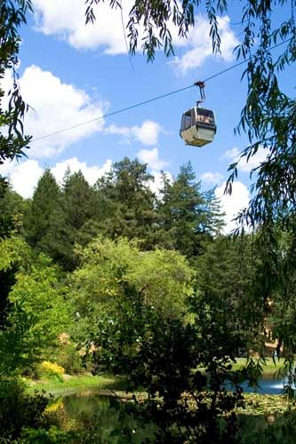 Sterling Winery Tram. Fun to view the vineyards below. Beautiful Place to visit.