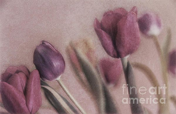 I'm now Selling on Fine Art America!