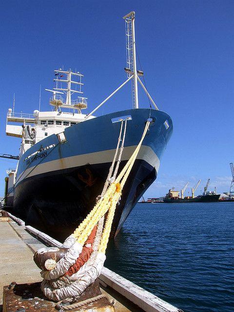 Boat docked at the Fremantle Harbour.