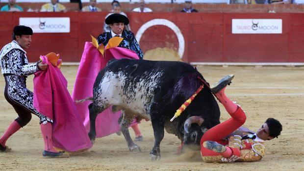 Murió un torero en España tras una brutal cornada  El torero Victor Barrio es corneado en la plaza de toros de Teruel, en España. Foto: EFE