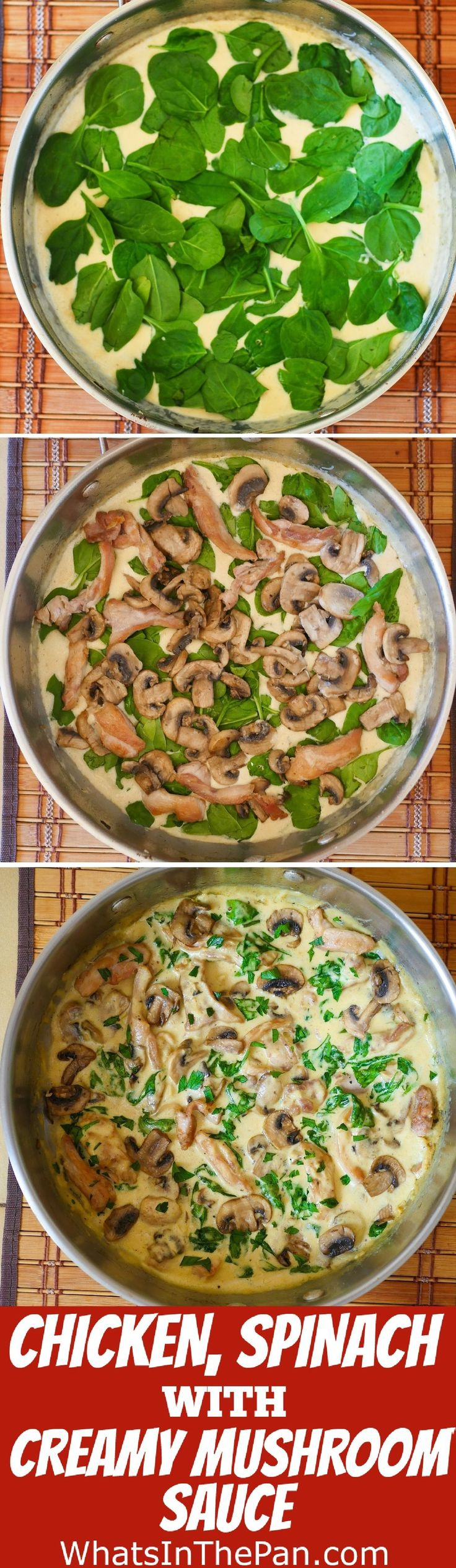 Chicken and Spinach in Creamy Mushroom Sauce - easy weeknight dinner recipe.