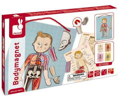<p>Janod won met deze puzzel van het menselijk lichaam de Best Toy Award! Geef het magneetbord een mooi plekje aan je muur en leer al puzzelend over het menselijk lichaam.<br />De doos bevat een magneetbord van 26 x 41.5 cm en 76 magneten om het menselijk lichaam samen te stellen.4 Kaarten met tekeningen in 10 verschillende talen (waaronder nederlands) over het skelet, de organen, spieren en het lichaam. Incl. houten aanwijsstok.</p>