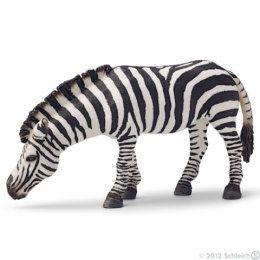 Zebra na pastvě - Schleich