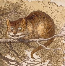 The Cheshire cat as illustrator John Tenniel envisioned it in the 1866 publication