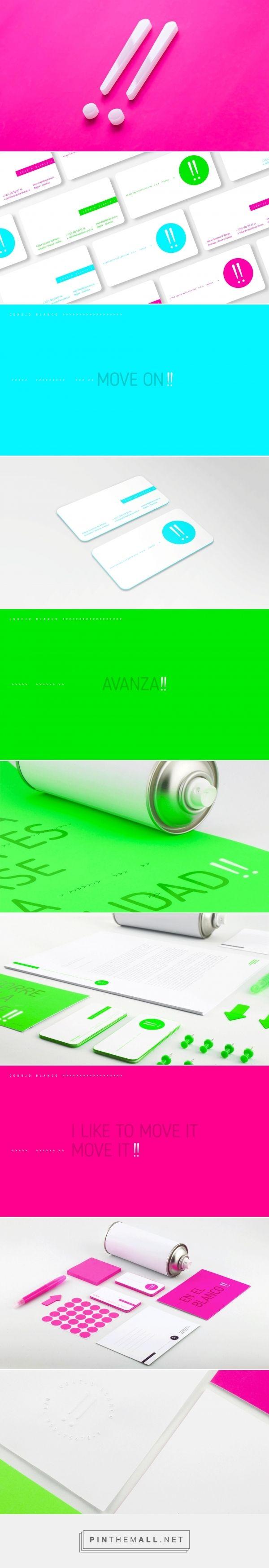 Rebranding / logo / design / conejo blanco / branding