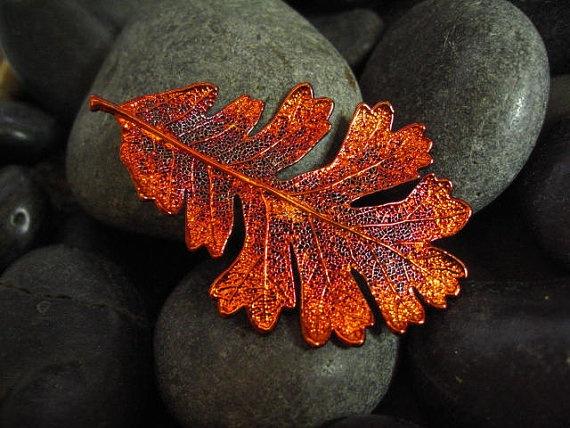 Real  Oak Leaf in Iridescent CopperOak Leaves, Oak Leaf, Leaf Photos Patterns Design, Real Oak, Жълъди Идеи, Iridescent Copper
