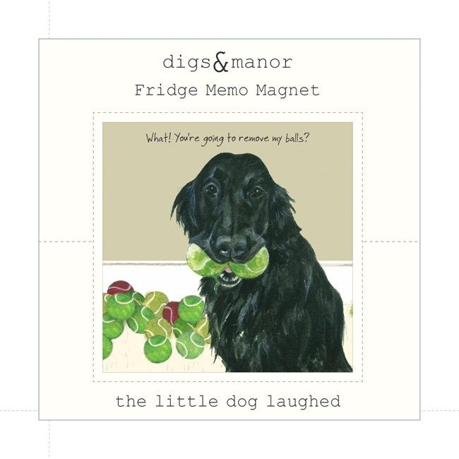 Retriever Magnet – Balls. A cheeky and funny magnet! They make great stocking filler gifts and a matching coaster is also available.   The magnet is sized 6.5cm x 6.5cm and backed onto a stylish card with a protective plastic sheaf to keep it clean.