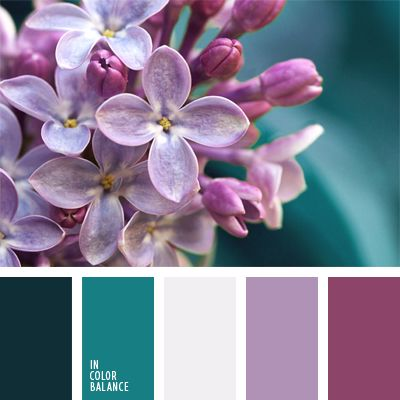 blanco, blanco sucio, color turquesa, color violeta rosado, combinación de colores para boda, de color malva, elección del color, matices malva, paleta de colores para una boda, rosado pálido, turquesa oscuro, turquesa y violeta.