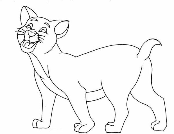 Kitty Cat, : This Hilarious Kitty Cat is Laughing Coloring Page