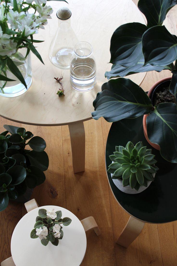 Urban Jungle Bloggers: Plants & Flowers by Roem