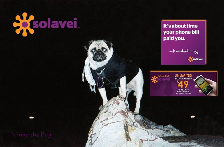 HOW DOES FREE MOBILE SERVICE SOUND TO YOU?    Lightning Fast 4-G T-Mobile Connections.    Voice, Text and Data.    No Contract.   The highest Residual Income.   ABOUT  SOLAVEI:   http://vimeo.com/48132768                                                                               5-Minute Message 1-877-356-8090     WWW.SOLAVEI.COM/VinnyThePug