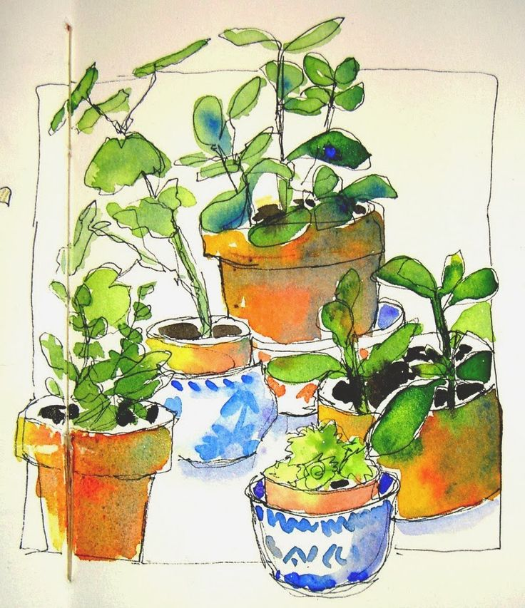Watercolor with pen & ink In and Out of The Studio