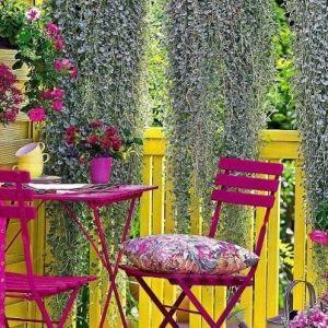 garden by Biljana Love