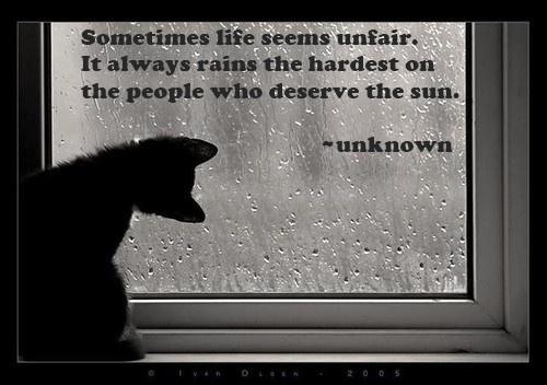 Sunshine & rain #quotes #brayola