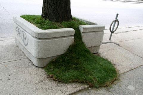 芝生があふれだす - まとめのインテリアの画像