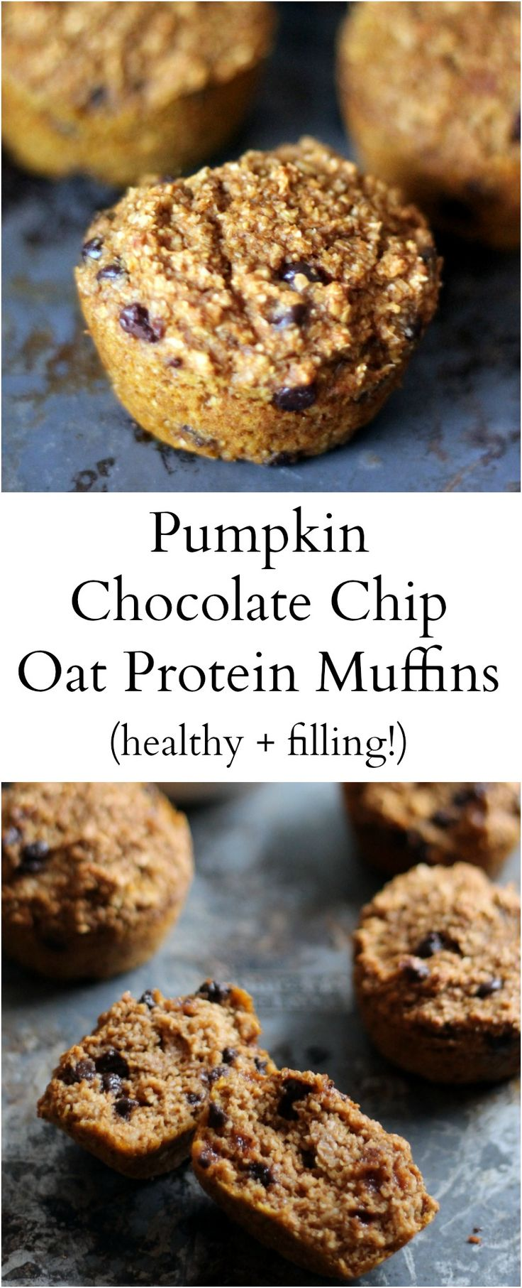 Healthy pumpkin oat bran muffins made with protein powder and greek yogurt to help keep you full! These muffins are delicious!