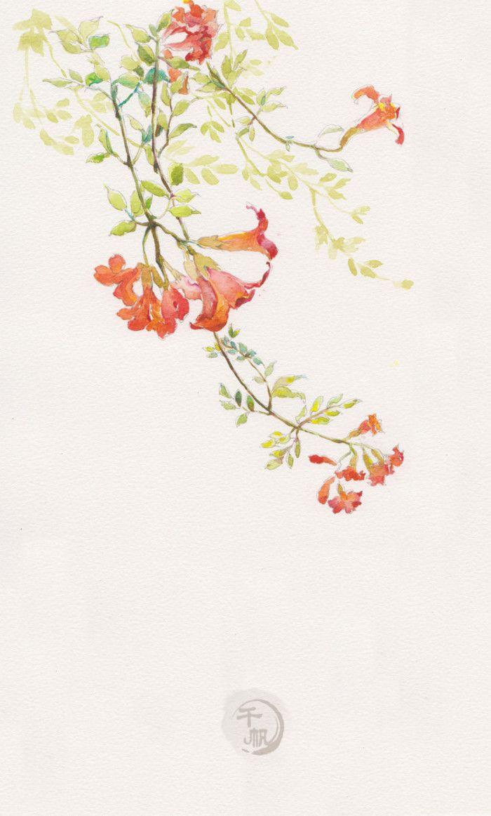 美。来自阿团丸子的图片分享-堆糖;