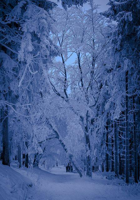 Winter, Feldberg Taunus, Germany