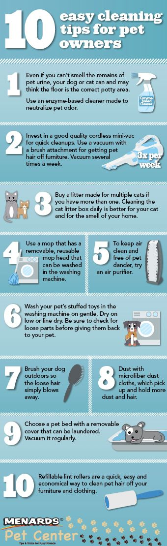 Keep a clean home with these 10 easy cleaning tips for pet owners. http://www.menards.com/main/c-19356.htm?utm_source=pinterest&utm_medium=social&utm_campaign=petcenter&utm_content=pet-storage-and-cleaning&cm_mmc=pinterest-_-social-_-petcenter-_-pet-storage-and-cleaning