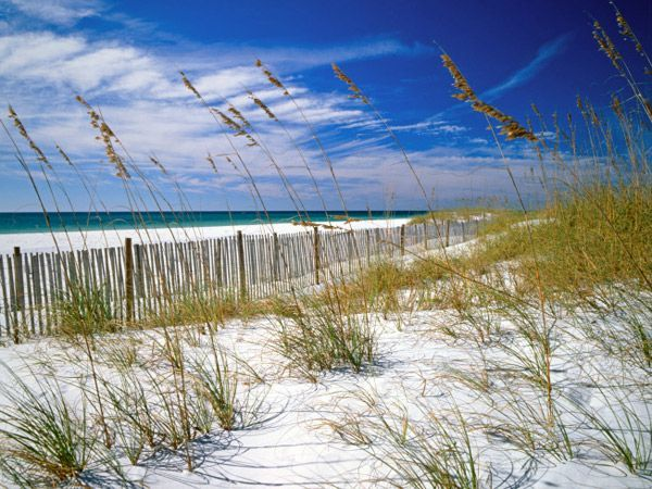 Florida: Sands, At The Beaches, Beaches Quotes, Islands, Sea, Ralph Waldo Emerson, Families Vacations Spots, Places, Florida Beaches