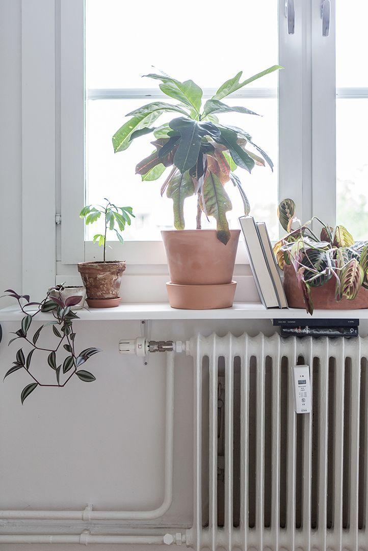 Mini apartamento tipo estudio pequeño con decoración nórdica y minimalista 8