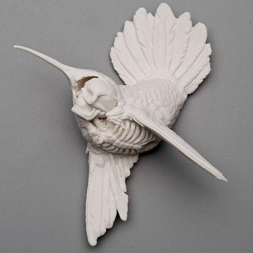 bird/ skull