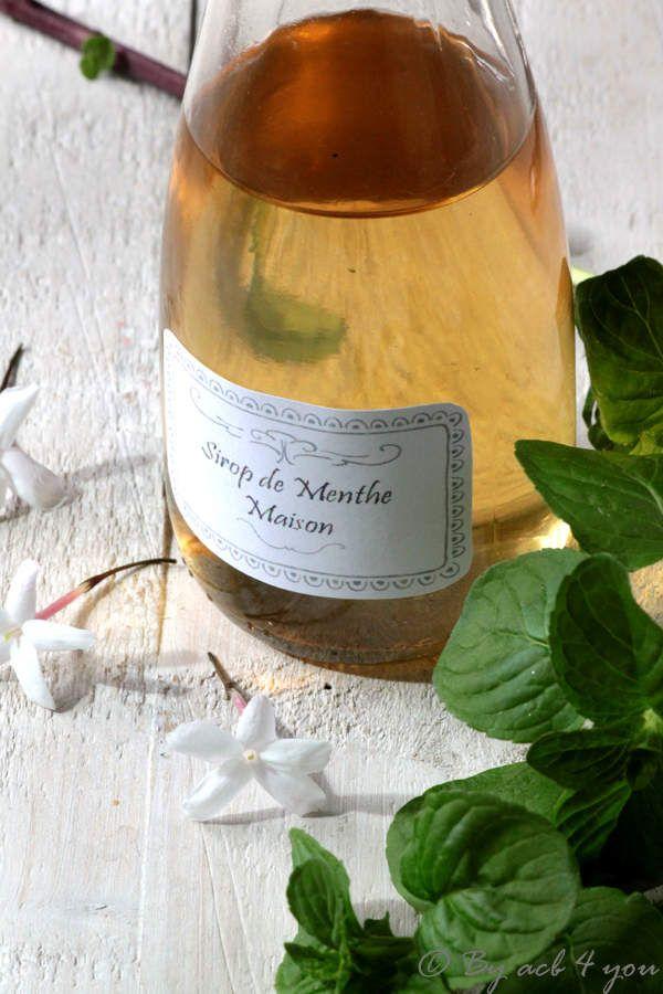 1000 ideias sobre sirop de menthe no pinterest sirop for Alcool de menthe fait maison