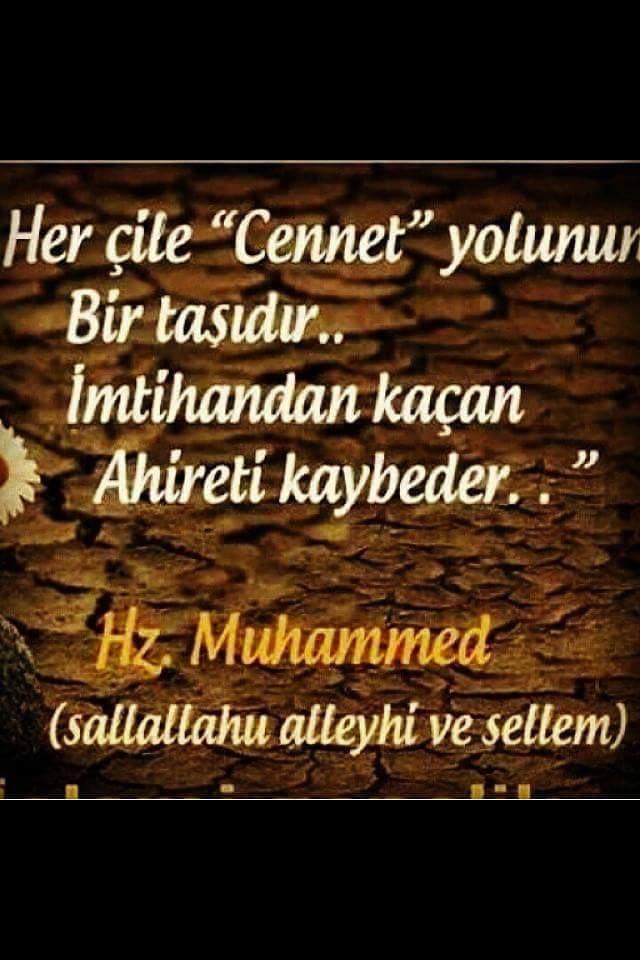 Hz  Muhammed sav buyurdular ki;