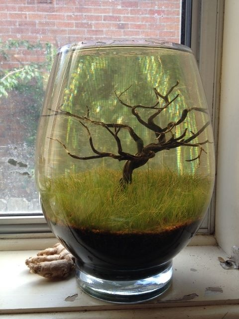 Vase with tree and hairgrass
