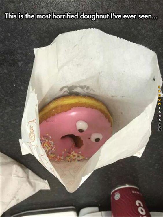 Horrified Doughnut